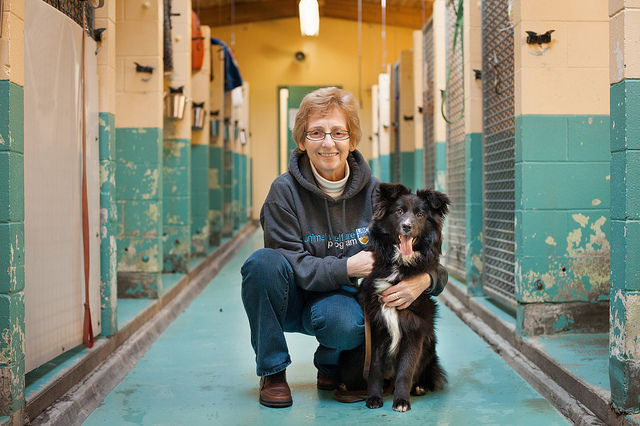 Nancy Clarke, UBC Animal Welfare PhD Student